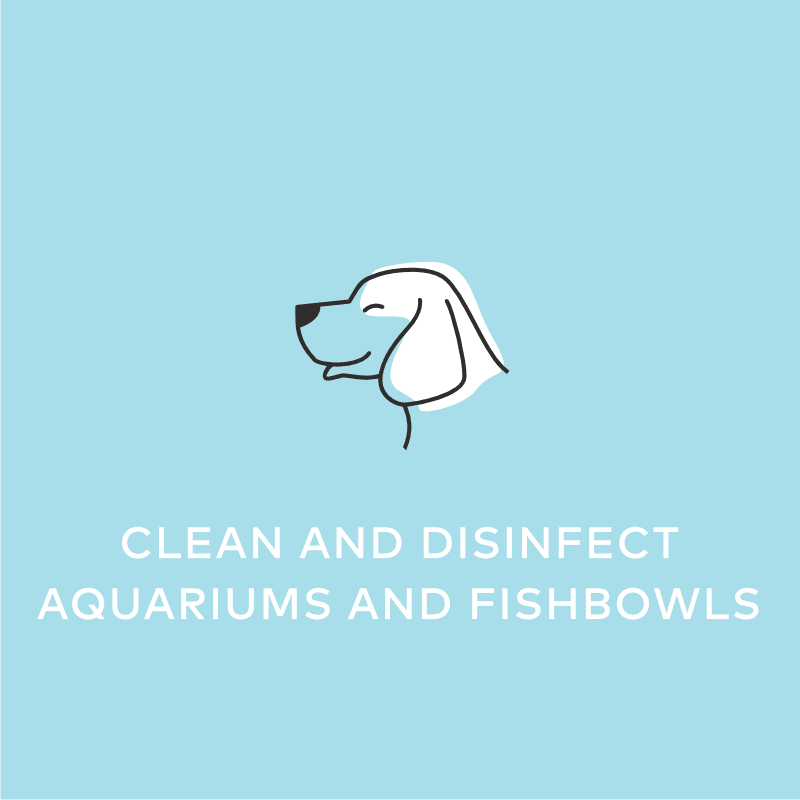 Clean and Disinfect Aquariums and Fishbowls