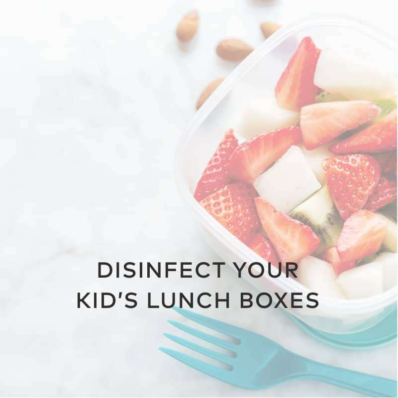 Disinfect Your Kid's Lunch Boxes