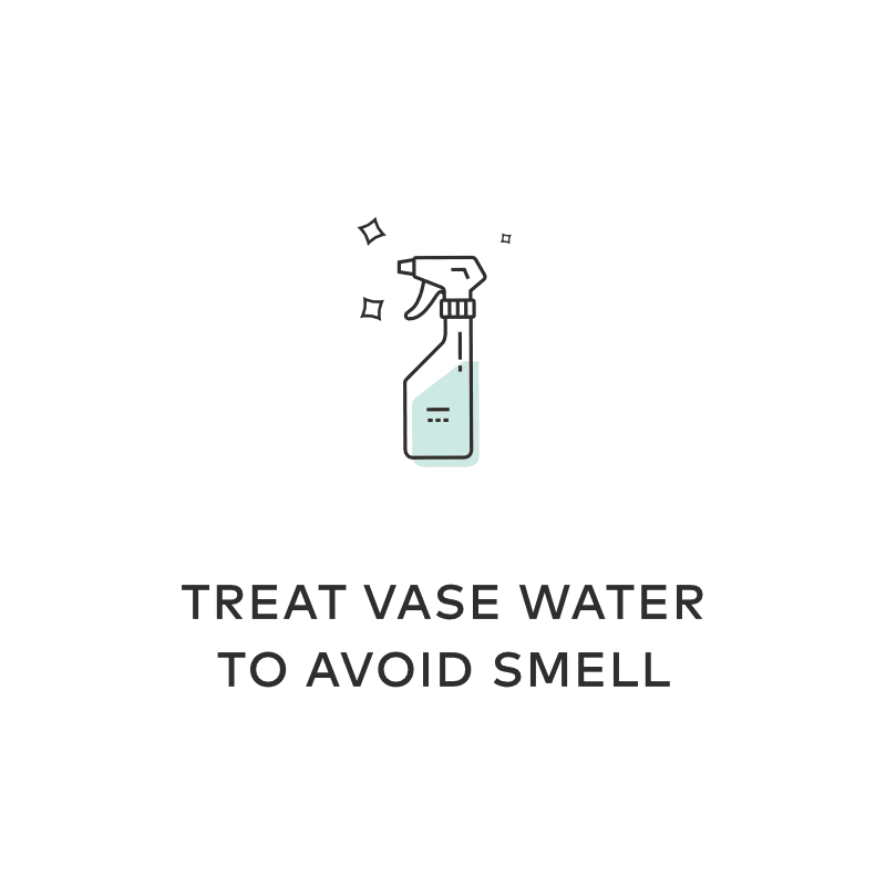 Treat Vase Water to Avoid Smell