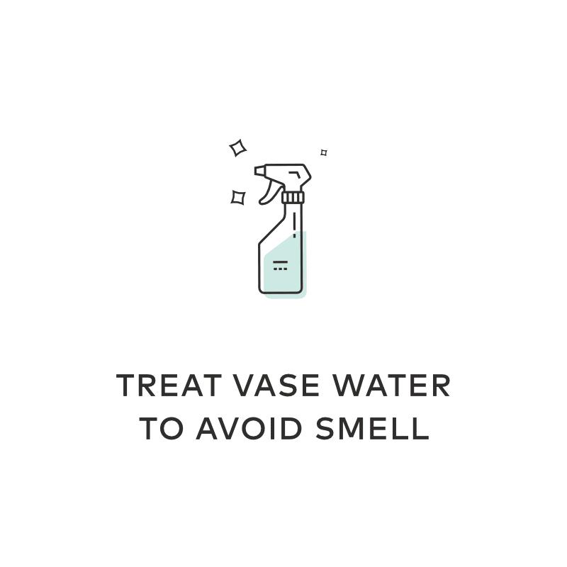treat vase water