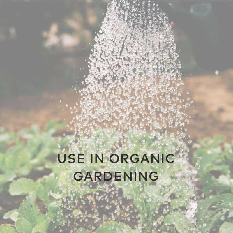 Use In Organic Gardening